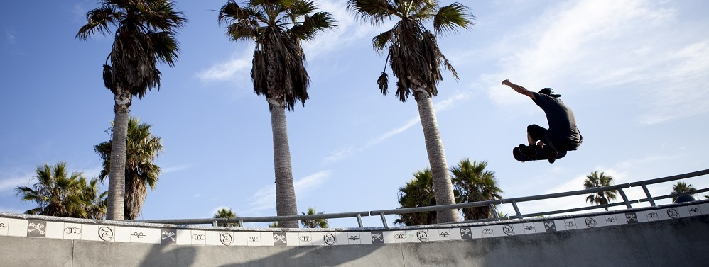 skate boarder in Venice Beach jumping with palm trees behind him